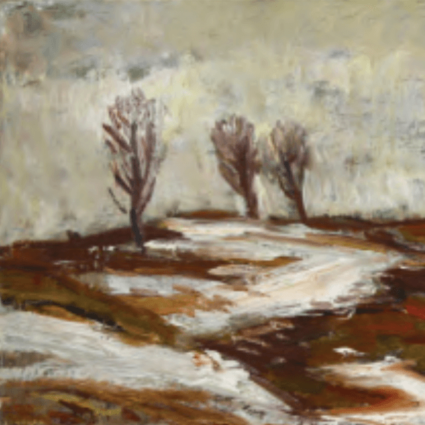 Galeria Marie Medveckej